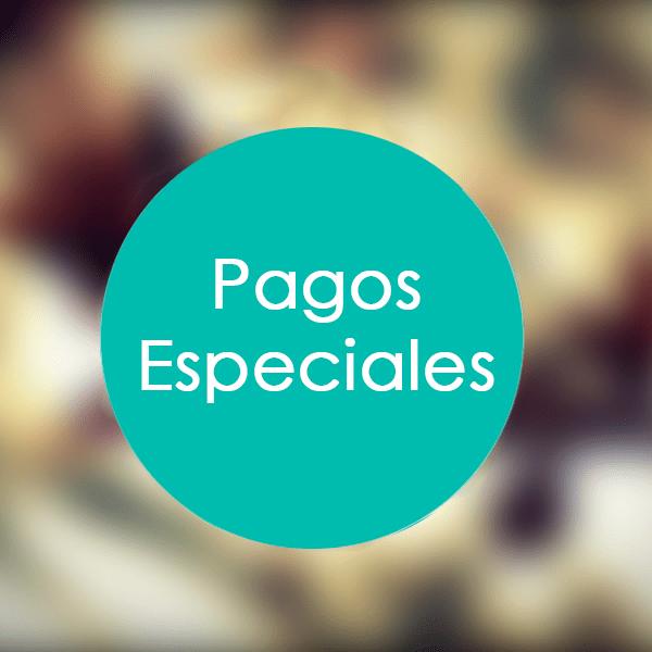 Pagos-Especiales